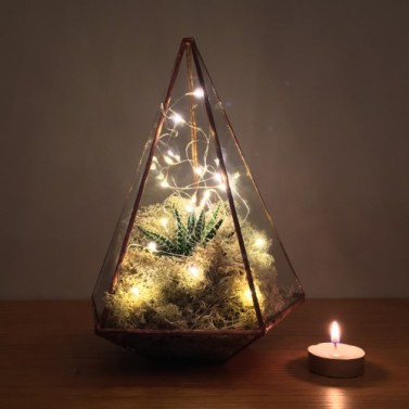 Adding lights to a plant terrarium is a lovely touch for autumn and winter