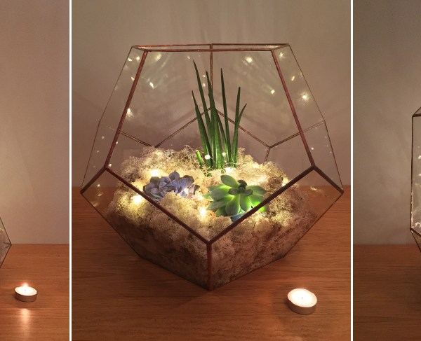 Review: DIY copper Aztec jewel terrarium kit from the Urban Botanist