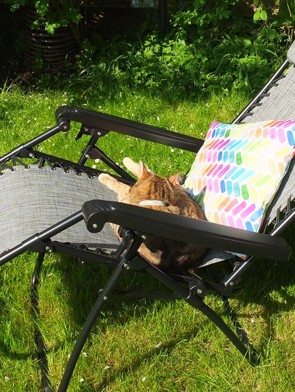 Garden chair review: VonHaus Textoline Zero Gravity reclining chair from Domu