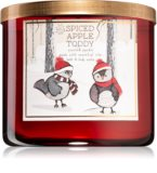 Spiced apple toddy candle a seasonal home scent to enjoy
