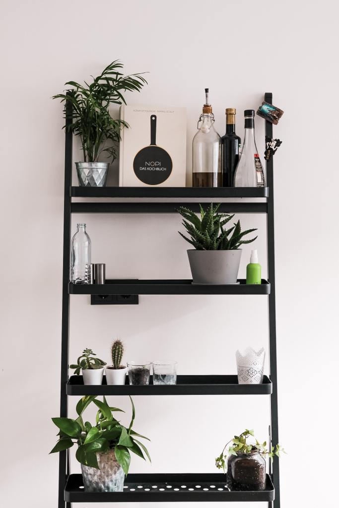 Creative ways to display home accessories and plants
