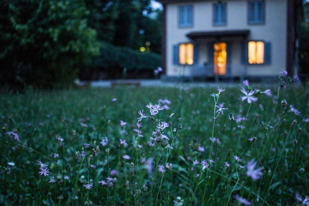 A well maintained and functional garden could add value to your home