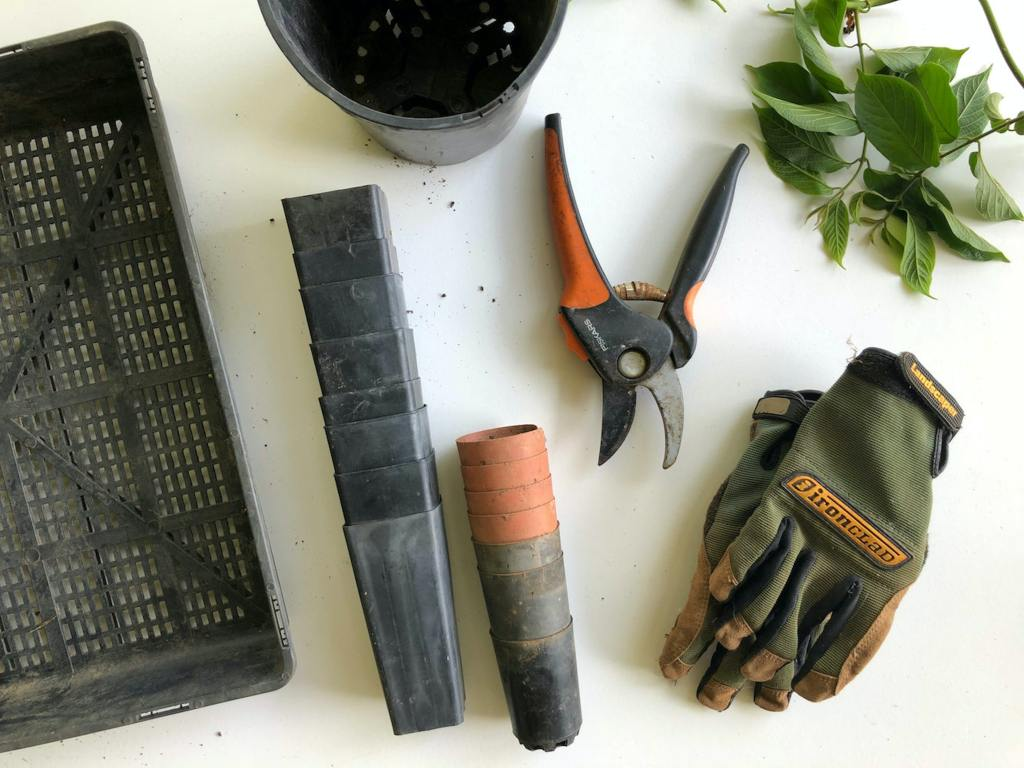 Only buy the gardening essentials you really need