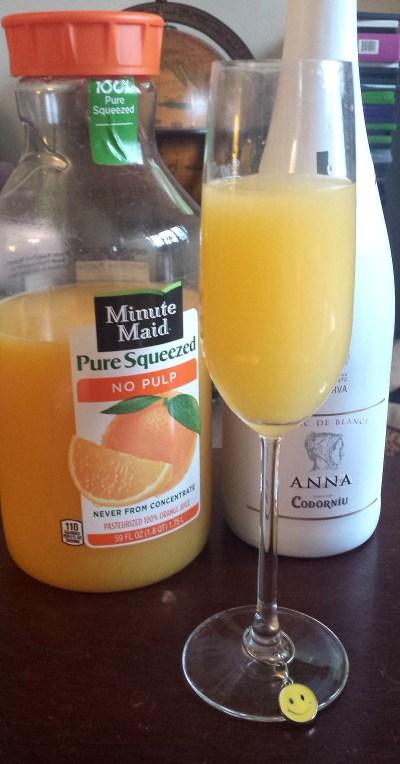 20160101_134807_mimosas