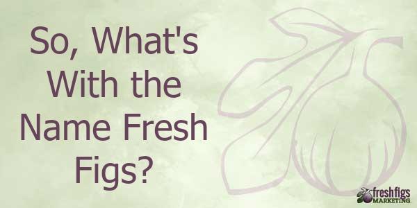 Fresh Figs Marketing