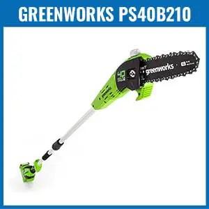 Greenworks PS40B210 Cordless Pole Saw