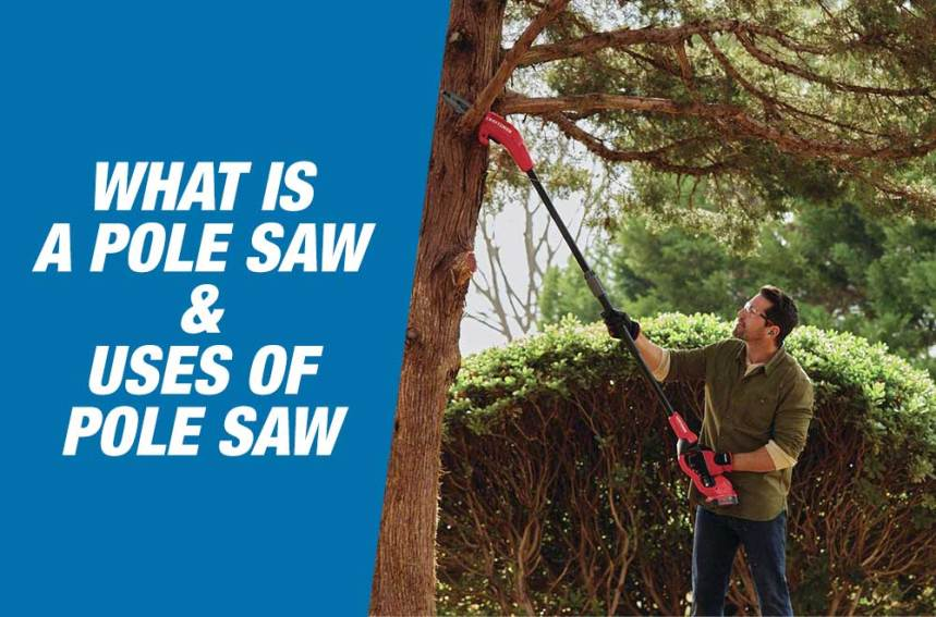 What Is A Pole Saw