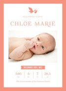 stork birth announcement