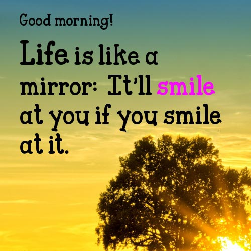 Beautiful Nature Status For Whatsapp: Good Morning Quotes With Images For Whatsapp