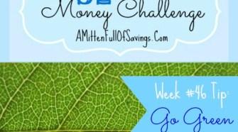 Did you know that going green can help you save money? In this week's 52 week challenge tip we talk about tips that can help you go green and SAVE!!