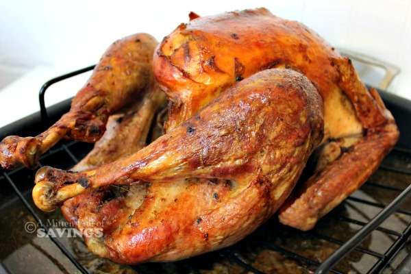 cooked turkey final results