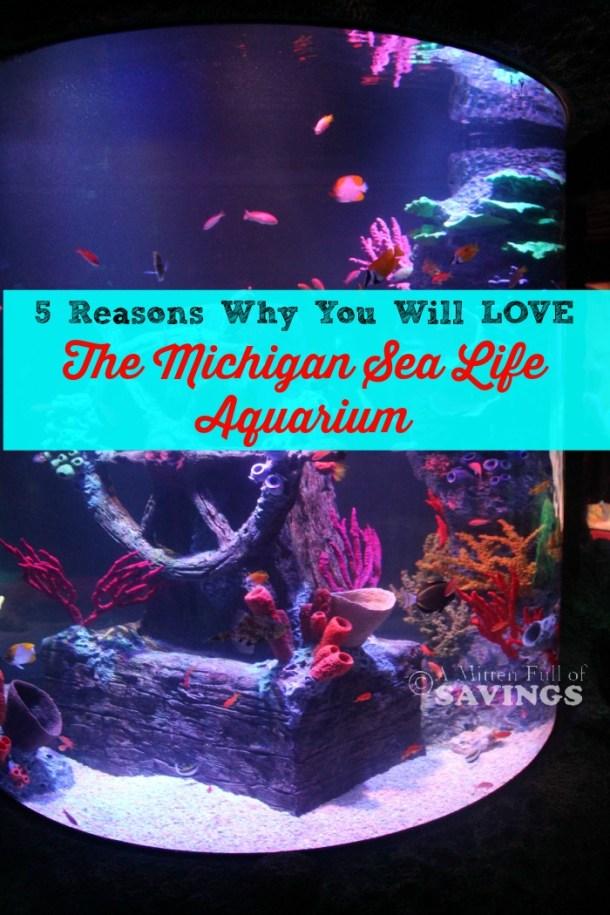 michigan sea life aquarium