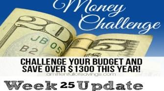 52 Week Money Challenge Buy Generic Medication