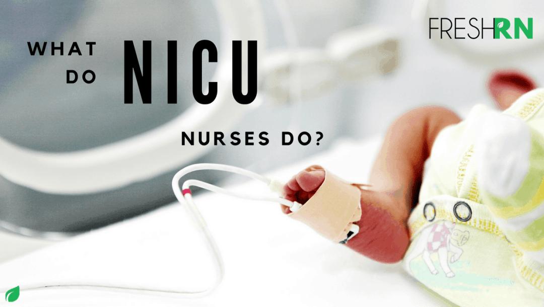 What Do Nicu Nurses Do Freshrn