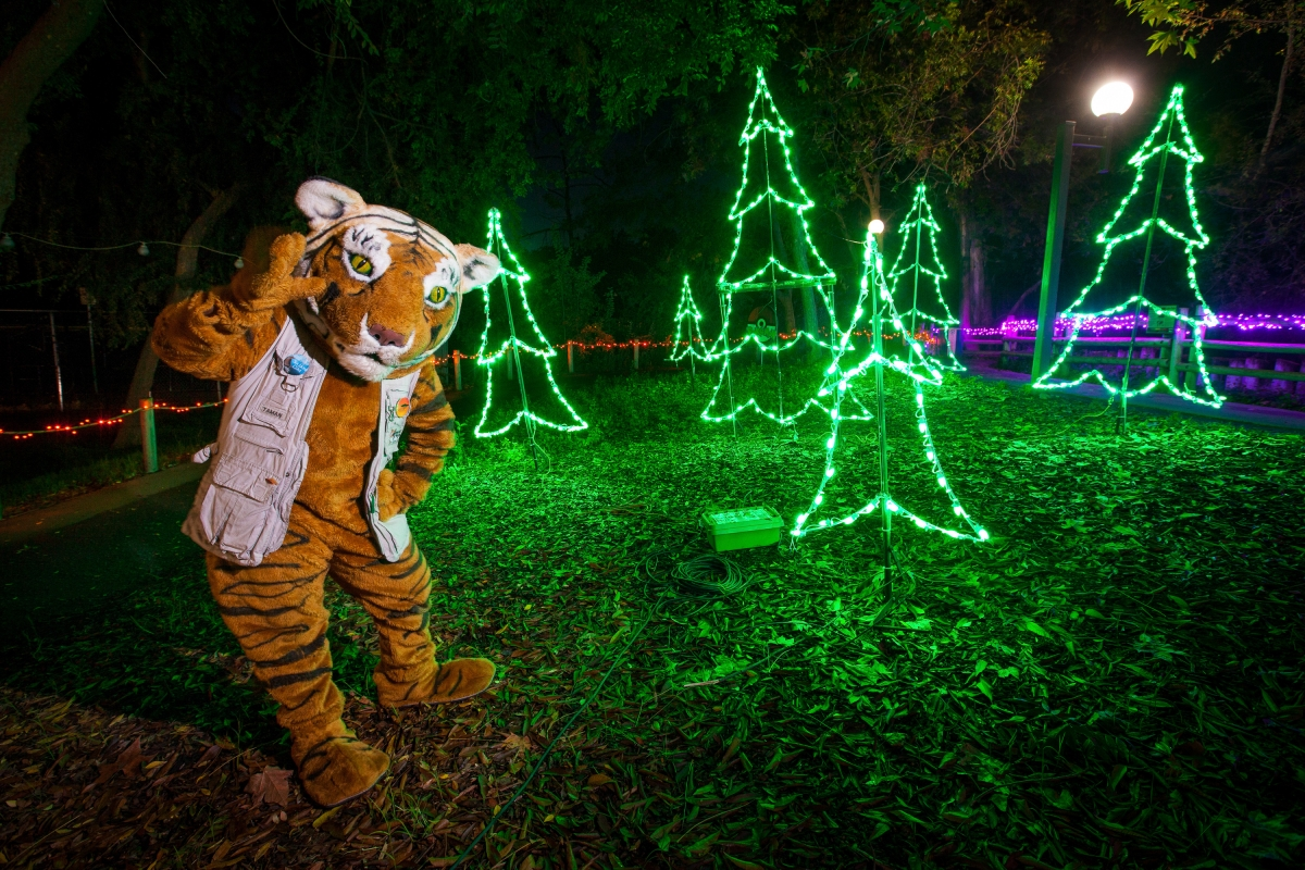 Fresno Zoo Christmas Lights