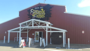 Take a Trip to the Past with Simonian Farms