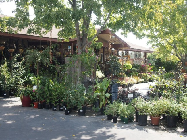 Evergreen Garden Center