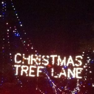 xmas tree lane 4