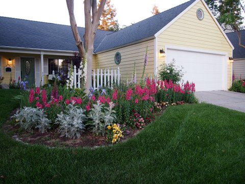 The Yellow Cottage circa 2013