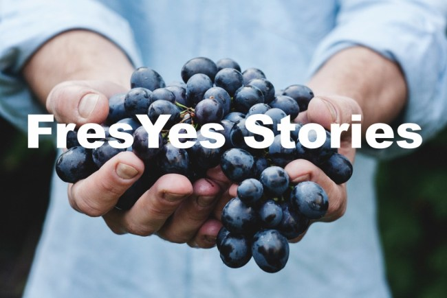 FresYes Stories