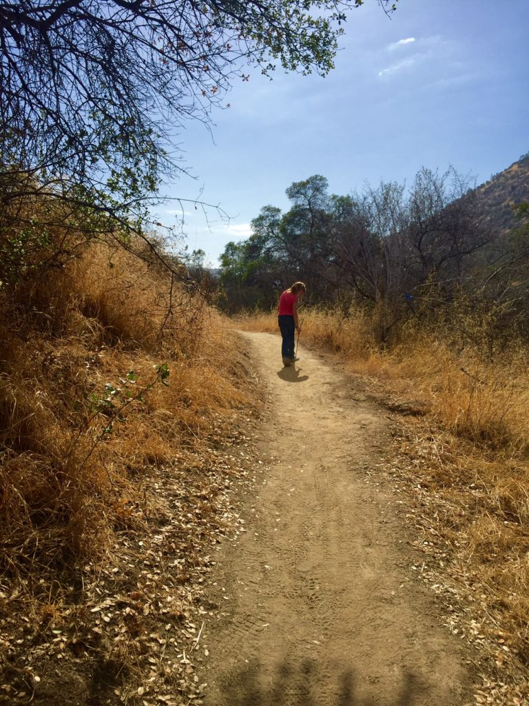 on the hiking trail