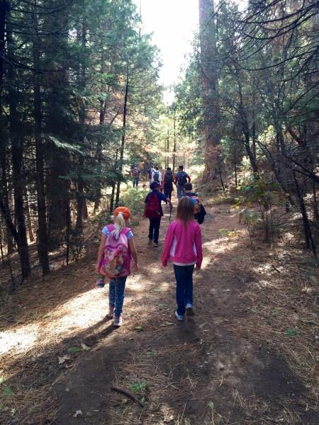 The trail at Lewis Creek Trailhead