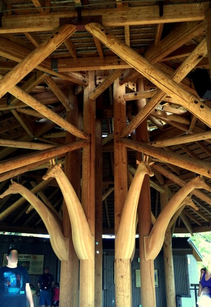 Beautiful beams and carved giraffes decorate the giraffe feeding and viewing area