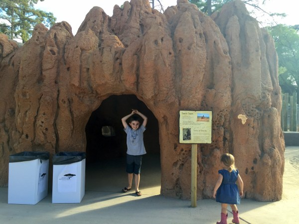 Interactive children's exhibits allow kids to experience what it might be like to live in a termite home or be a meerkat.