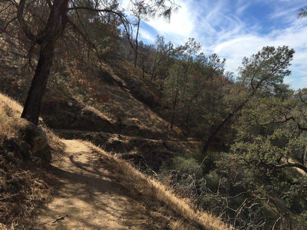 The Pincushion Peak Trail