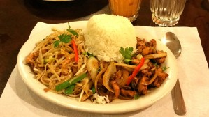 Thai Royal Orchid Restaurant Review