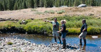 Fly Fishing in the Central Valley and Sierra Nevadas