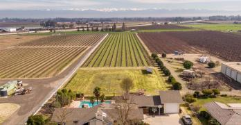 Breathtaking Home on 4 acres with Vineyards