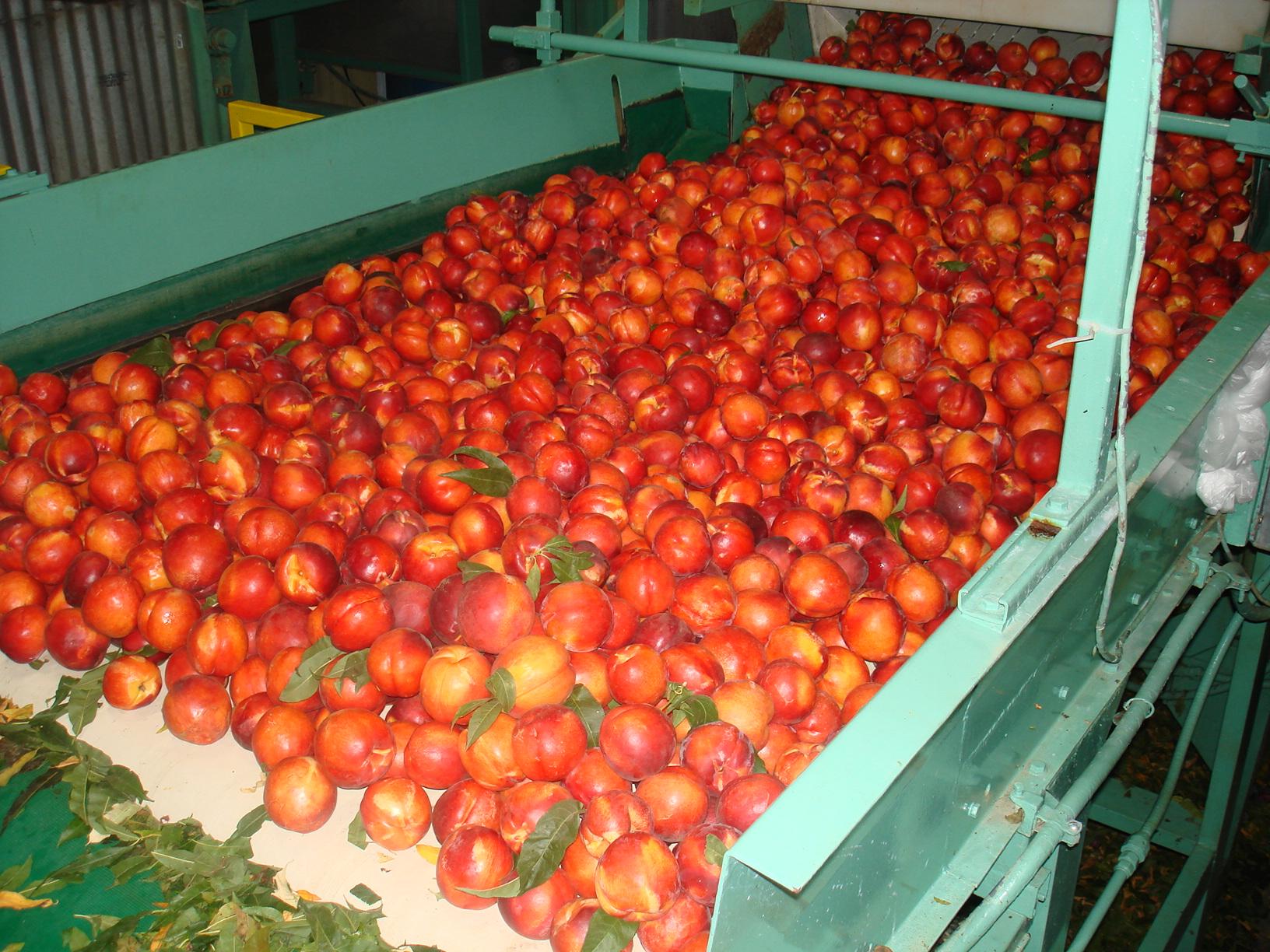 Fruit Trail Bus Tour