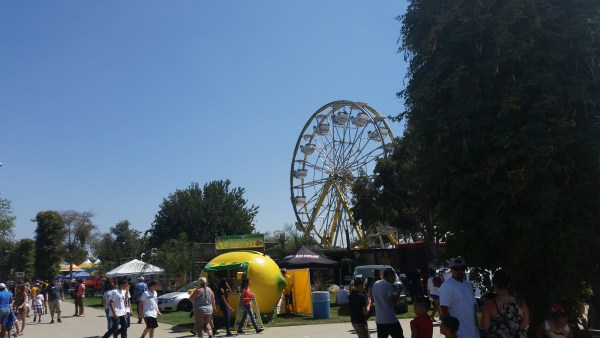 Tulare County Fair