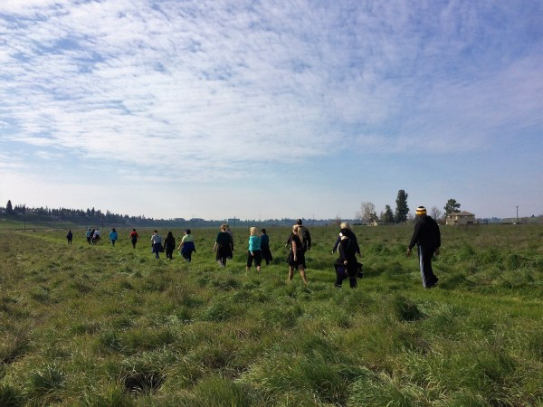 Fresno Mindfulness Walks