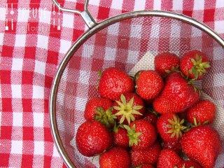 Erdbeeren Freude am Kochen