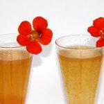 """Pfirsich Grenadine Prosecco Cocktail – """"Die Farbe Orange"""""""