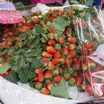 Erdbeer-Molke bzw Fruchtsaft-Molke – vegetarisch