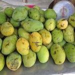 Mango Topfencreme indisch – vegetarisch