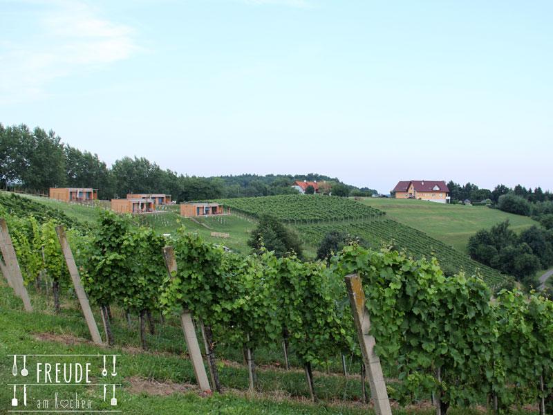 Weinurlaub-Unterlamm-35