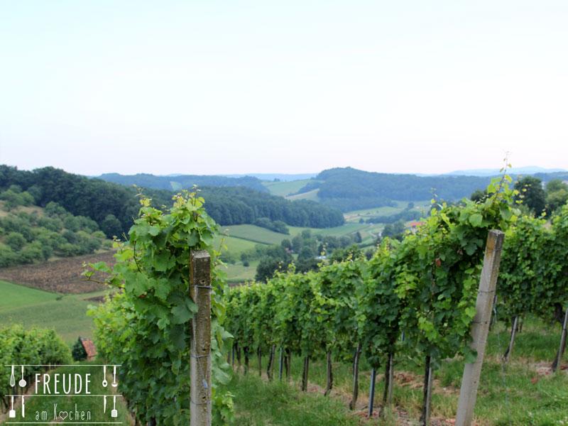 Weinurlaub-Unterlamm-36