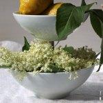 Holunderblüten Pudding – vegetarisch