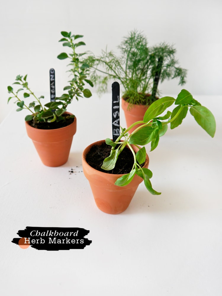 DIY-Chalkboard-Herb-Markers