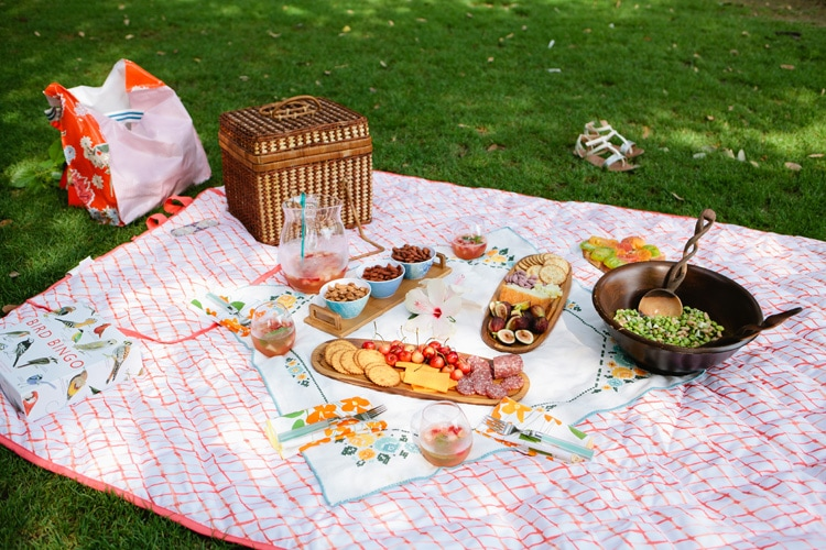 Freutcake-Picnic-Party-2