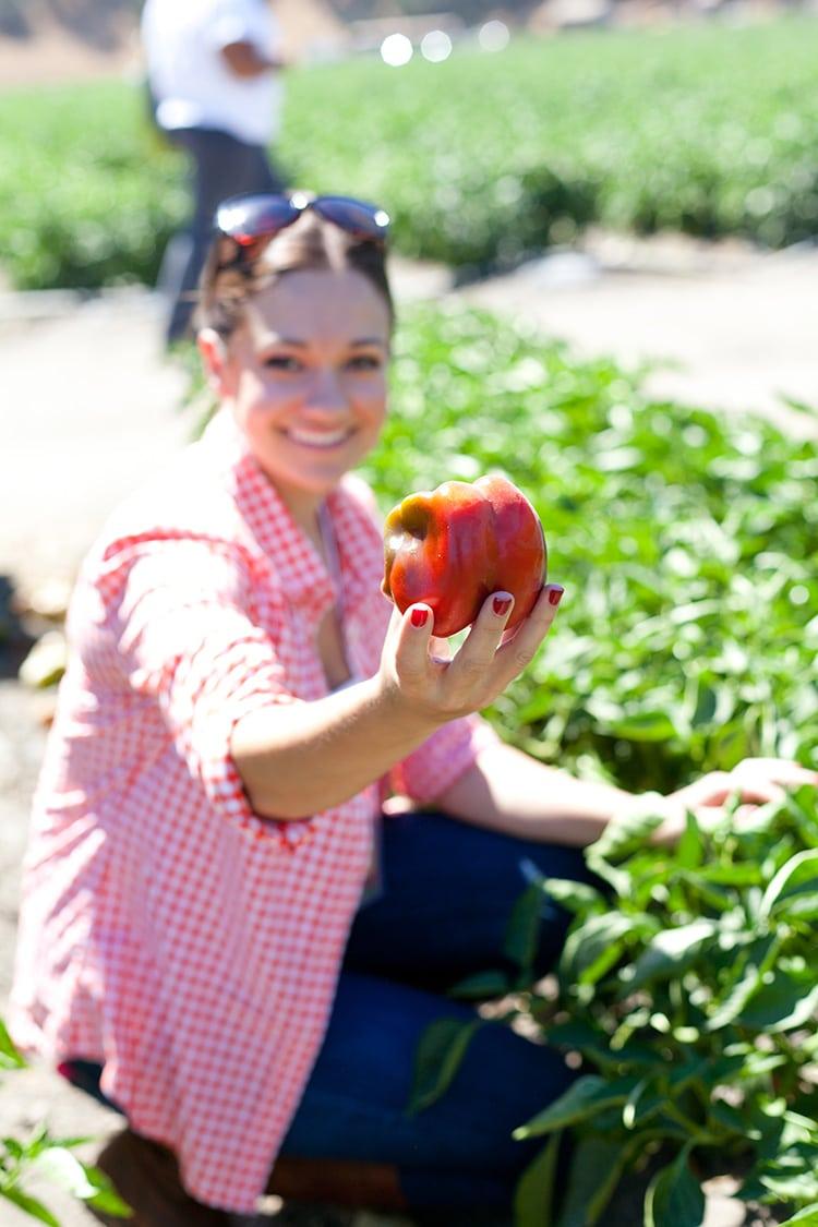 Tutti-Frutti-Farms-3