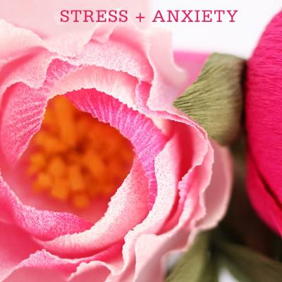 Dealing with Stress & Anxiety