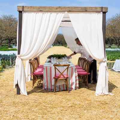 Gardening daydreams at Kendall Jackson