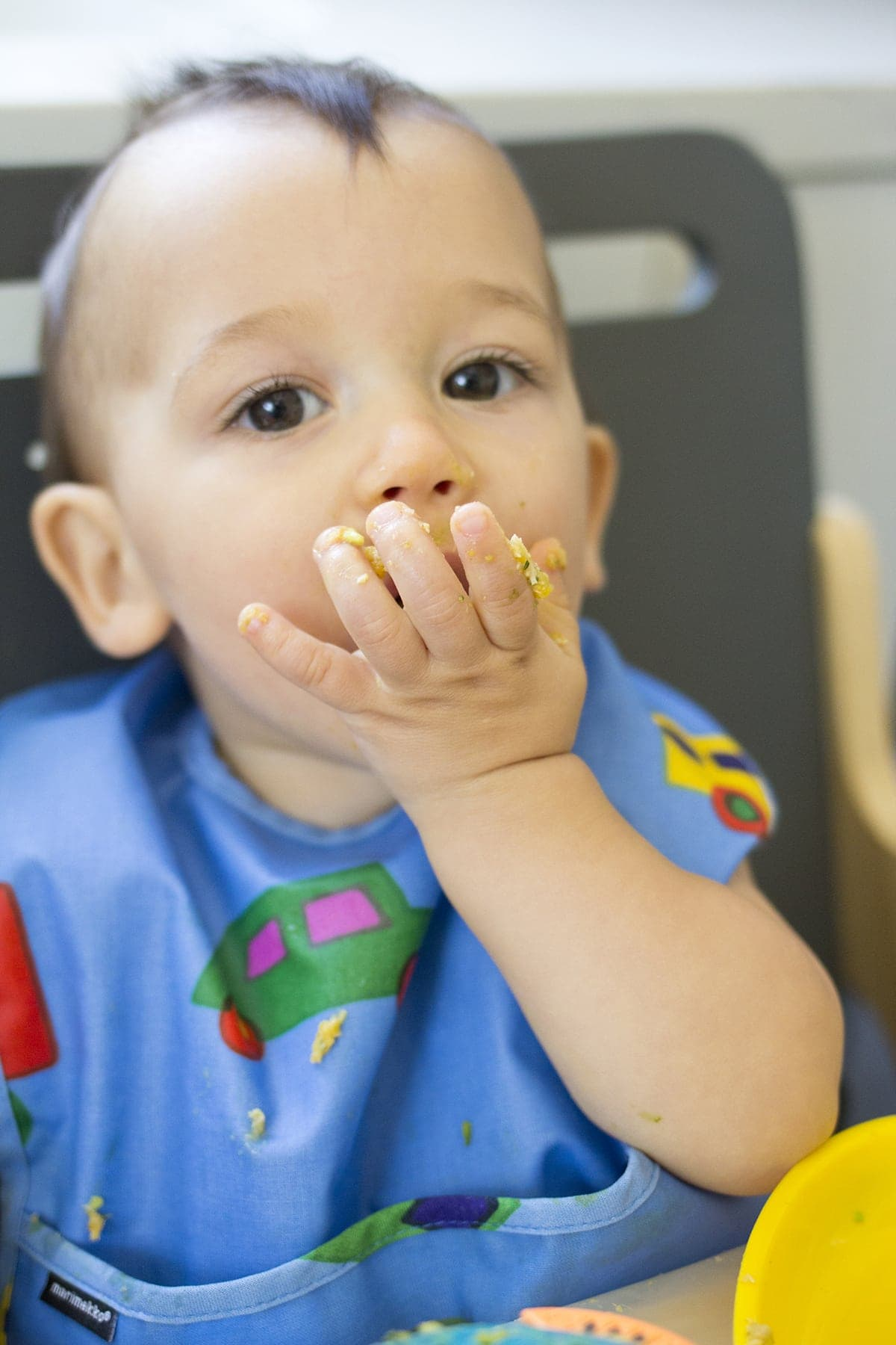 Lunch Ideas for Babies Chicken Stew