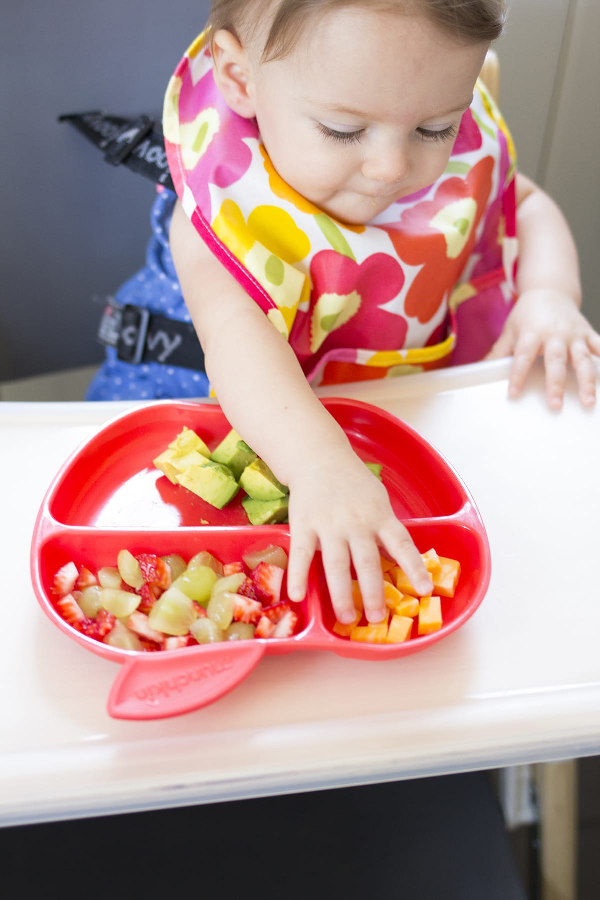 Lunch Ideas for Babies Finger Foods
