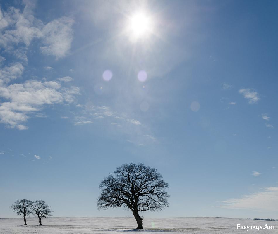 Was taken in Nordwestmecklenburg, , , 13.03.2013 13:35:59